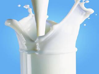 Which is better Milk; Cow's milk or buffalo's milk?