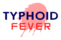 How to cure Typhoid fever?