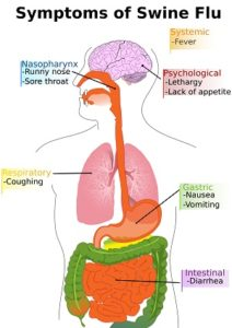 swine-flu-symptoms