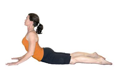 10 best yoga exercise for back pain  nutri choice 4 u
